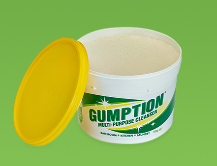 Have You Got the Gumption?